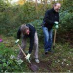Report - Natuurwerkdag Scheveningse Bosjes