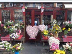 Heel veel bloemen voor Nel Schaap