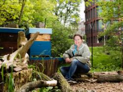 Happy hour: lezing bijenhouder Isabelle Hylkema